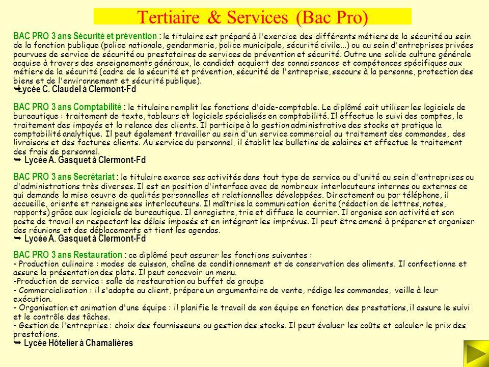 Tertiaire & Services (Bac Pro) BAC PRO 3 ans Exploitation des transports : ce technicien participe à l'organisation et à la mise en oeuvre des transpo