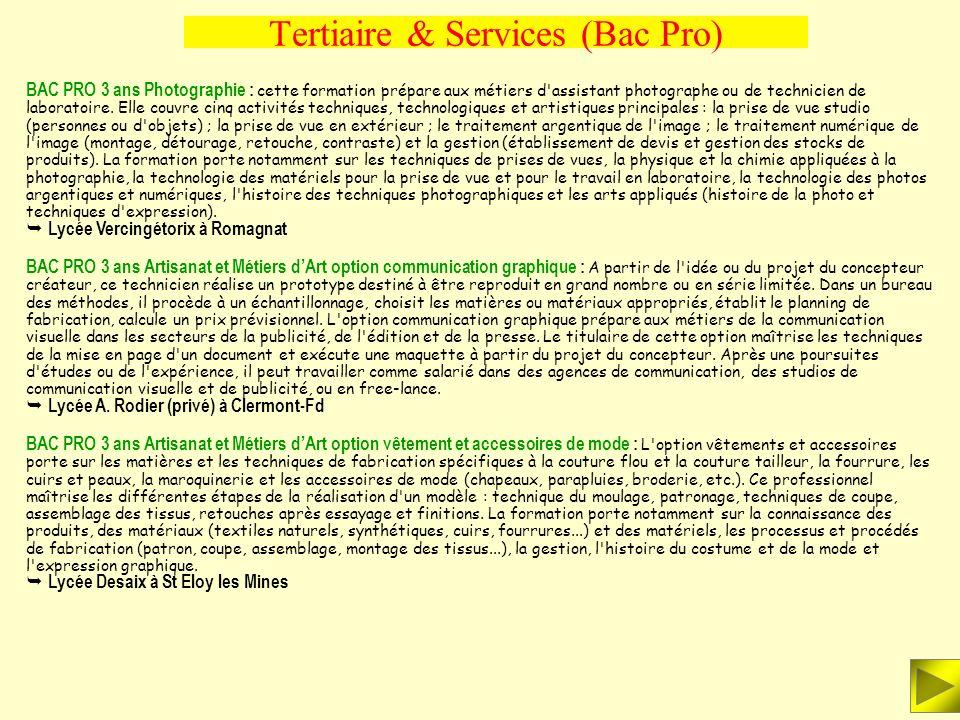Tertiaire & Services (Bac Pro) BAC PRO 3 ans Sécurité et prévention : le titulaire est préparé à l'exercice des différents métiers de la sécurité au s