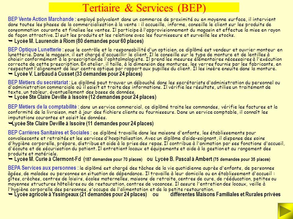 Tertiaire & Services (BEP) BEP Conduite et service dans le transport routier : Si l'activité principale du chauffeur de messagerie, du livreur, du con