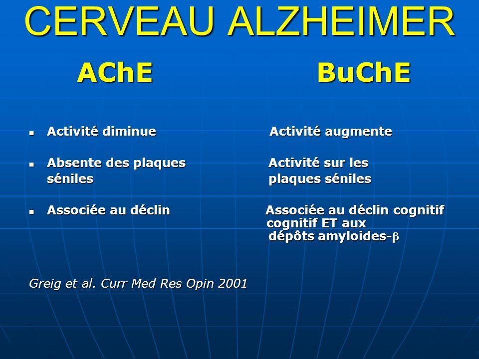 CERVEAU ALZHEIMER AChEBuChE Activité diminue Activité augmente Activité diminue Activité augmente Absente des plaques Activité sur les Absente des pla