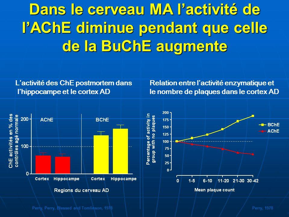 Dans le cerveau MA lactivité de lAChE diminue pendant que celle de la BuChE augmente Relation entre lactivité enzymatique et le nombre de plaques dans