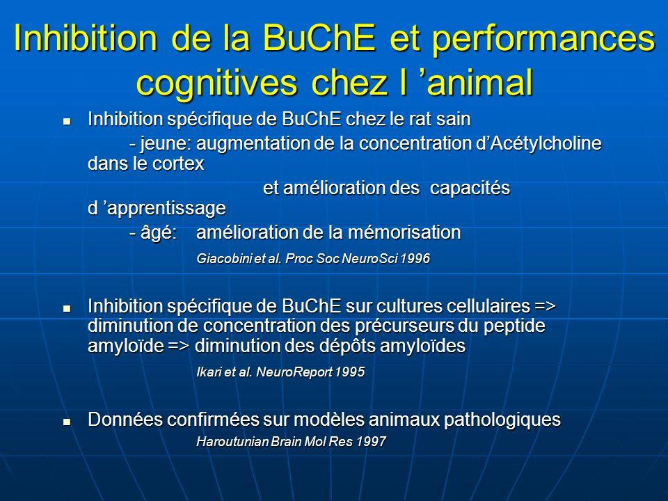 Inhibition de la BuChE et performances cognitives chez l animal Inhibition spécifique de BuChE chez le rat sain Inhibition spécifique de BuChE chez le