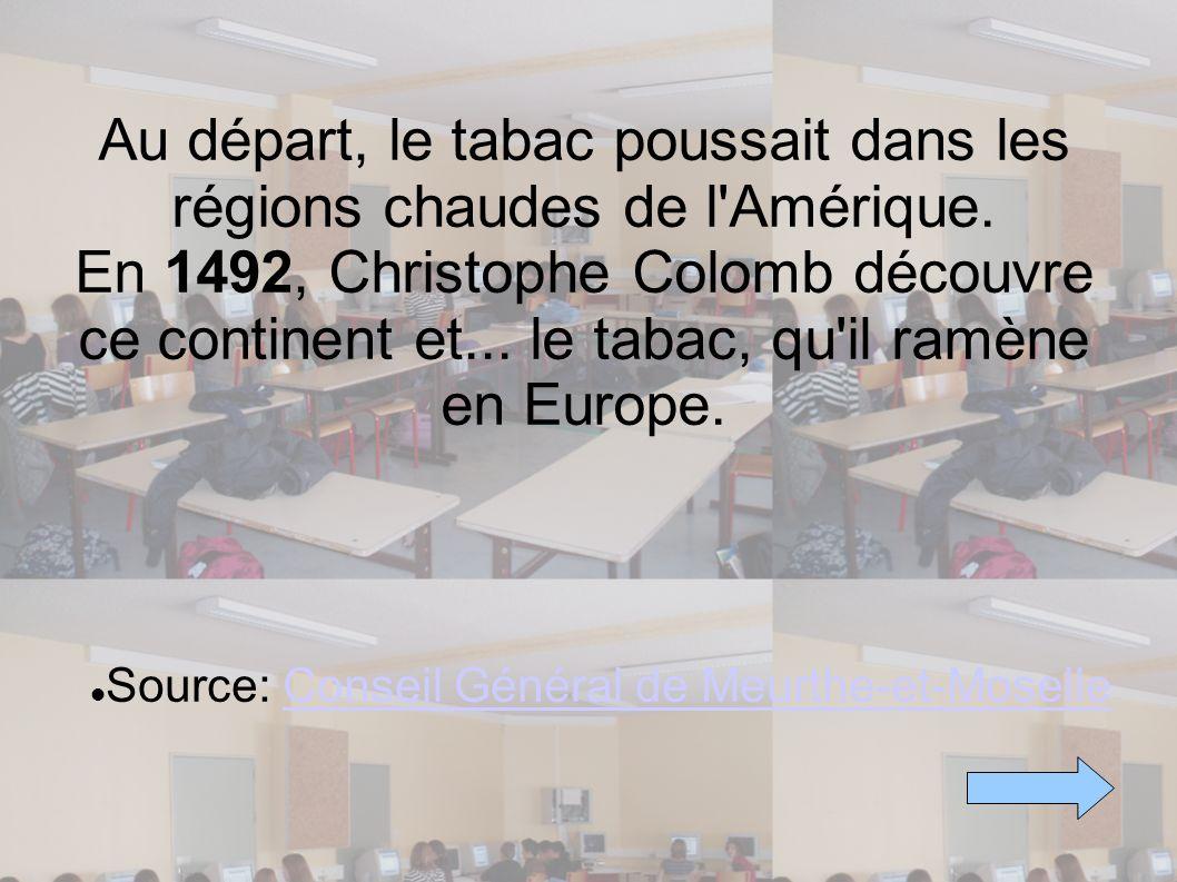 Au départ, le tabac poussait dans les régions chaudes de l'Amérique. En 1492, Christophe Colomb découvre ce continent et... le tabac, qu'il ramène en