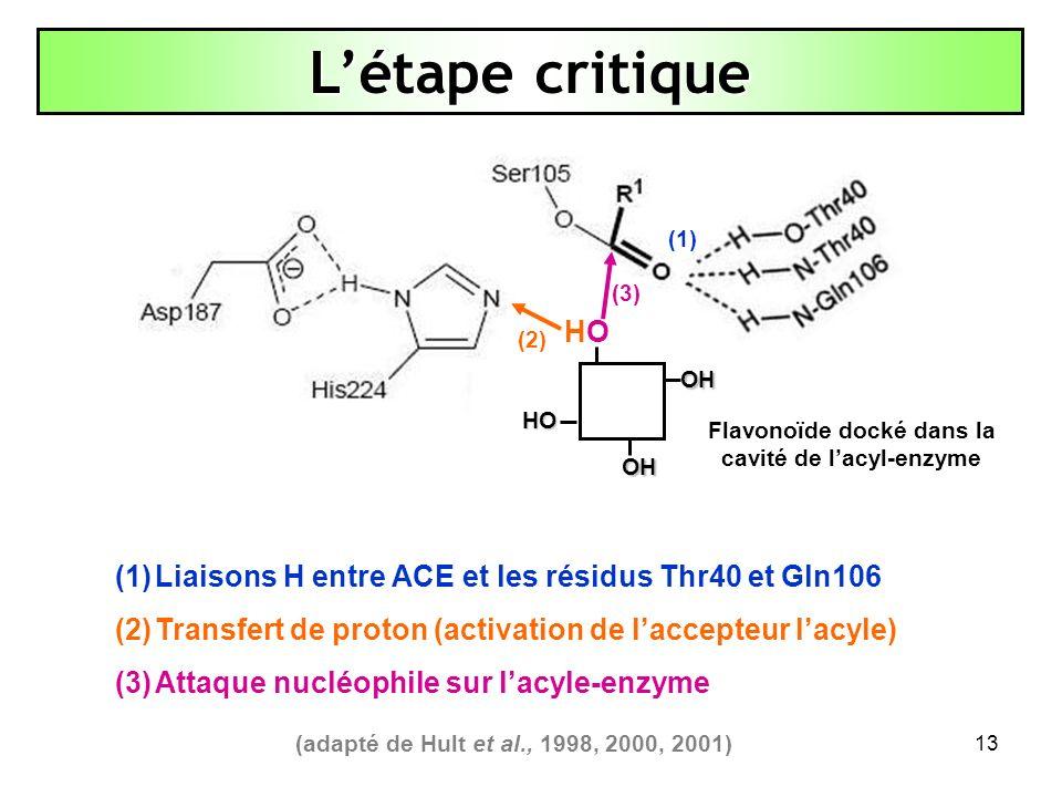 13 (1) (3) (2) Létape critique (1) (1)Liaisons H entre ACE et les résidus Thr40 et Gln106 (2) (2)Transfert de proton (activation de laccepteur lacyle)