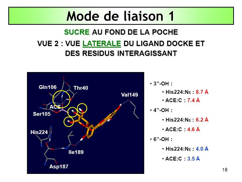 18 Mode de liaison 1 SUCRE AU FOND DE LA POCHE VUE 2 : VUE LATERALE DU LIGAND DOCKE ET DES RESIDUS INTERAGISSANT Thr40 His224 Asp187 Ile189 Val149 Ser