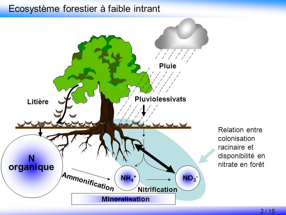 NO 3 - très mobile Biomasse racinaire faible NH 4 + peu mobile, Fixé par les charges négatives du sol, Biomasse racinaire forte ou association avec des mycorhizes Contexte La disponibilité en nitrate influence la biomasse et la croissance racinaire FaibleForte Disponibilité en nitrate Racines (Unité relative) Biomasse racinaire Production de racines 3 / 15 (Nadelhofer, 2000; Aber et al., 1985)