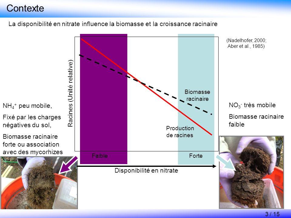 Contexte Selon les différentes espèces, la racine influence la disponibilité en nitrate dans le sol Activité potentielle de nitrification, nmol NO 3 - h -1 g -1 sol sec Aegopodium podagraria Deschampsia flexuosa Geum urbanum Convalaria majalis 0 5 10 15 Poa nemoralis Rhizosphère Sol distant * * 4 / 15 (Olsson and Falkengren-Grerup, 2000) Espèces préférant les nitrates en culture hydroponique Espèces préférant lammonium en culture hydroponique Espèce intermédiaire