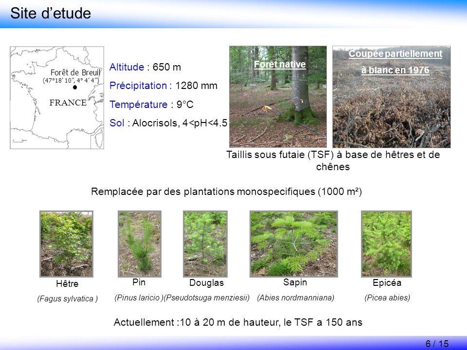 Résultats des études récentes sur le site experimental de Breuil Nitrification nette sous les différents peuplements 0.0 0.2 0.4 0.6 0.8 1.0 HêtrePinDouglasSapinEpiceaTSF Potentiel net de nitrification, mg kg -1 sol j -1 Il existe deux groupes despèces par rapport à la nitrification Hetre, Pin et Douglas Hêtre Pin Douglas Sapin, Epicéa et TSF Sapin Epicéa TSF 7 / 15