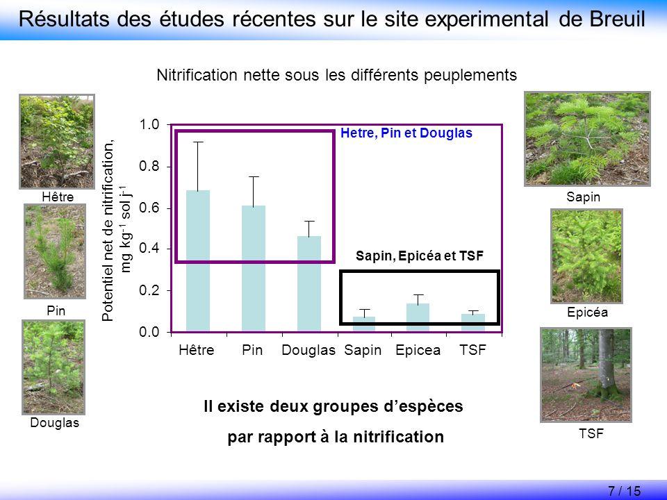 Résultats des études récentes sur le site experimental de Breuil Nitrification nette sous les différents peuplements 0.0 0.2 0.4 0.6 0.8 1.0 HêtrePinD