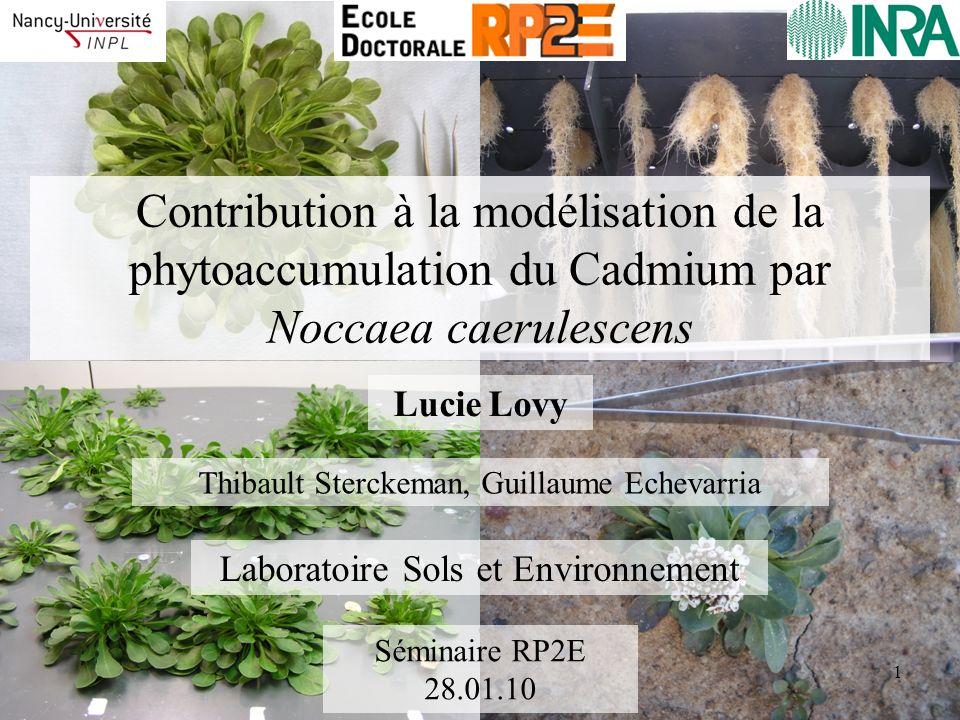 Contribution à la modélisation de la phytoaccumulation du Cadmium par Noccaea caerulescens Lucie Lovy Séminaire RP2E 28.01.10 Laboratoire Sols et Envi