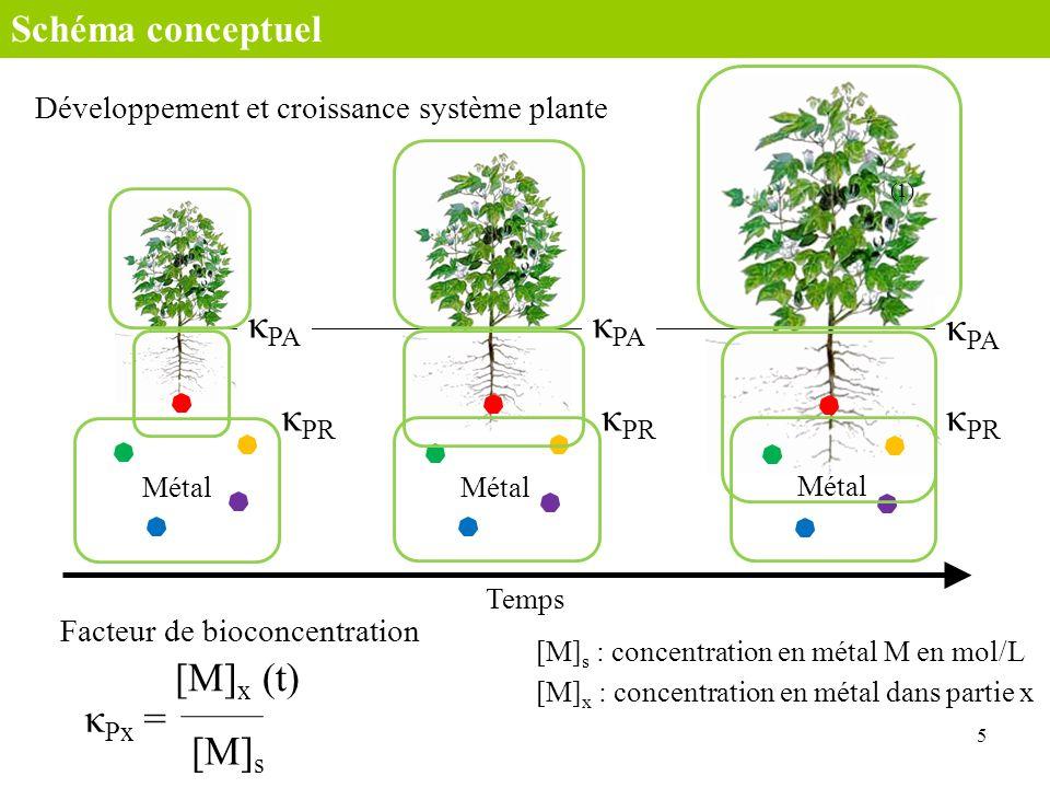 Métal Temps 5 Métal Développement et croissance système plante Schéma conceptuel κ PR κ PA κ Px = Facteur de bioconcentration [M] x (t) [M] s (1) κ PR