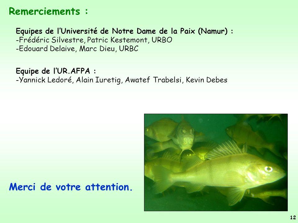 Merci de votre attention. 12 Remerciements : Equipes de lUniversité de Notre Dame de la Paix (Namur) : -Frédéric Silvestre, Patric Kestemont, URBO -Ed