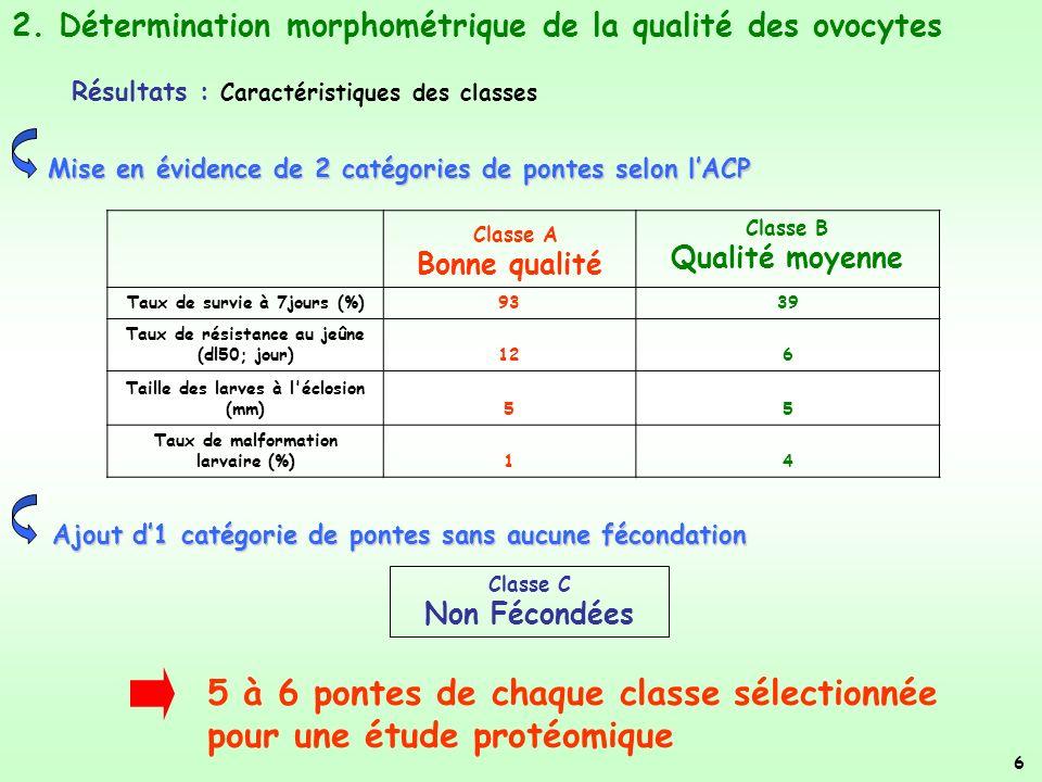 Classe A Bonne qualité Classe B Qualité moyenne Taux de survie à 7jours (%)9339 Taux de résistance au jeûne (dl50; jour)126 Taille des larves à l éclosion (mm)55 Taux de malformation larvaire (%)14 Mise en évidence de 2 catégories de pontes selon lACP 5 à 6 pontes de chaque classe sélectionnée pour une étude protéomique 2.
