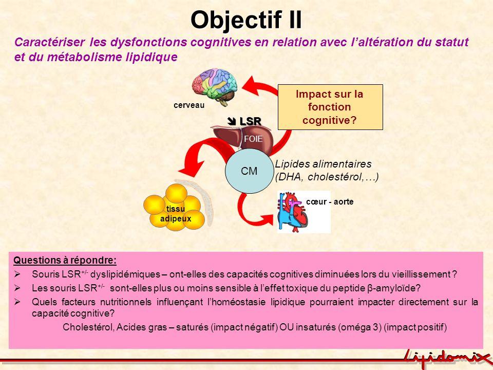 Objectif II Caractériser les dysfonctions cognitives en relation avec laltération du statut et du métabolisme lipidique Questions à répondre: Souris L