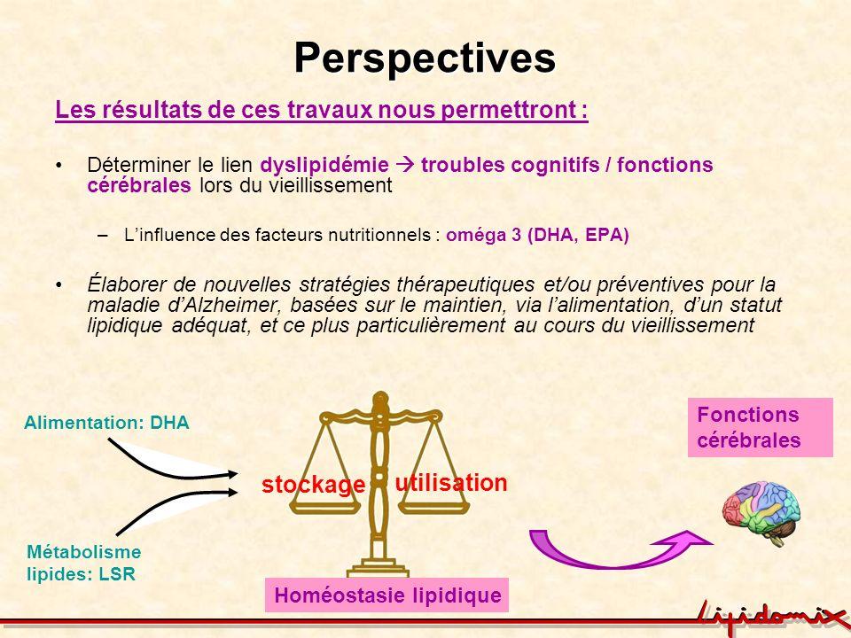 Perspectives Les résultats de ces travaux nous permettront : Déterminer le lien dyslipidémie troubles cognitifs / fonctions cérébrales lors du vieilli
