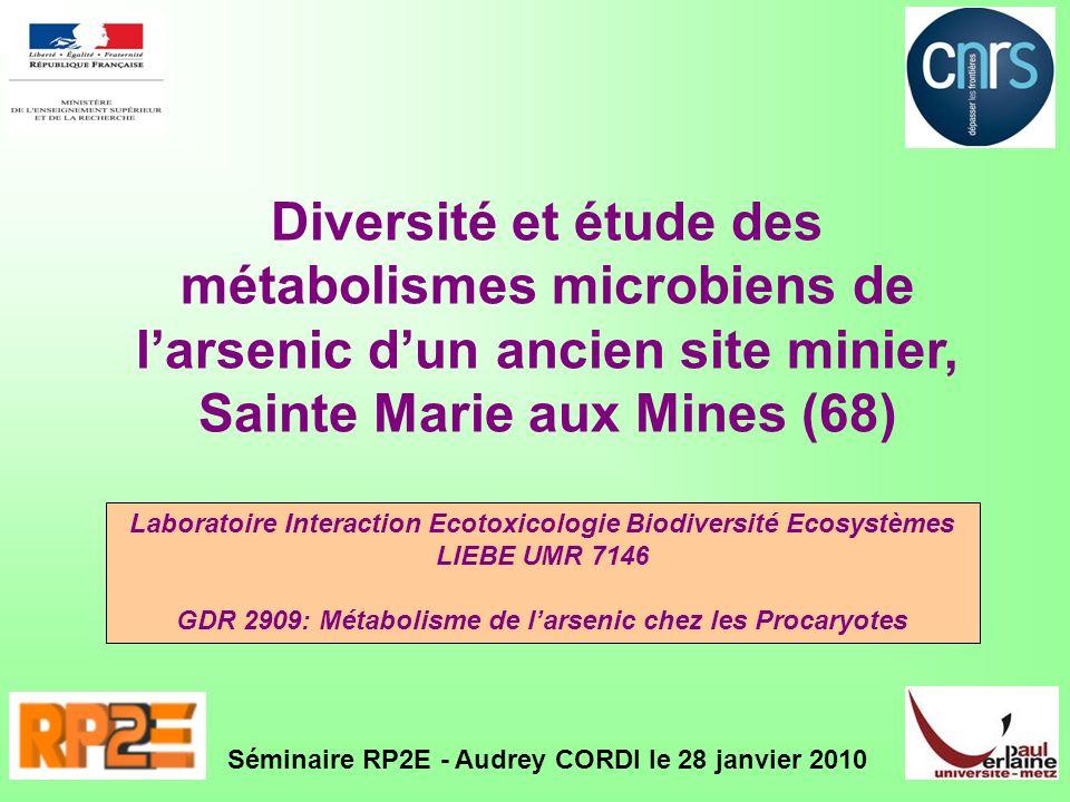 Diversité et étude des métabolismes microbiens de larsenic dun ancien site minier, Sainte Marie aux Mines (68) Séminaire RP2E - Audrey CORDI le 28 jan