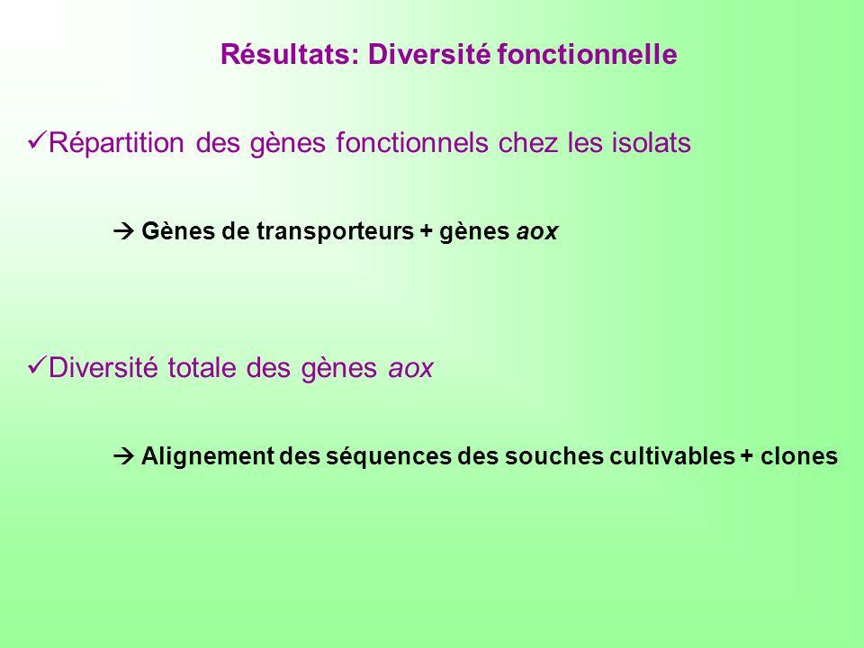Résultats: Diversité fonctionnelle Répartition des gènes fonctionnels chez les isolats Gènes de transporteurs + gènes aox Diversité totale des gènes a