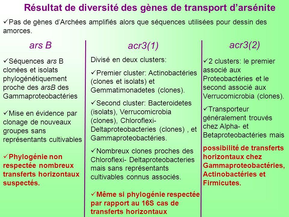 Résultat de diversité des gènes de transport darsénite Pas de gènes dArchées amplifiés alors que séquences utilisées pour dessin des amorces. Séquence