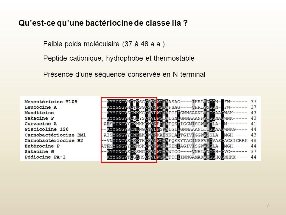 Quest-ce quune bactériocine de classe IIa ? Faible poids moléculaire (37 à 48 a.a.) Peptide cationique, hydrophobe et thermostable Présence dune séque
