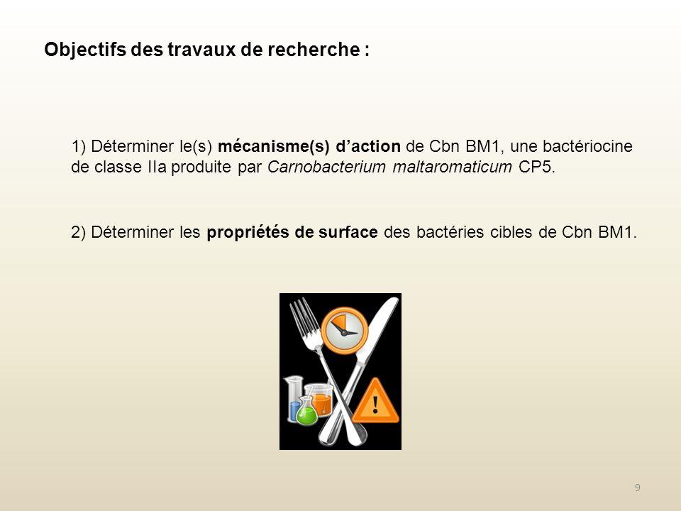 Objectifs des travaux de recherche : 1) Déterminer le(s) mécanisme(s) daction de Cbn BM1, une bactériocine de classe IIa produite par Carnobacterium m