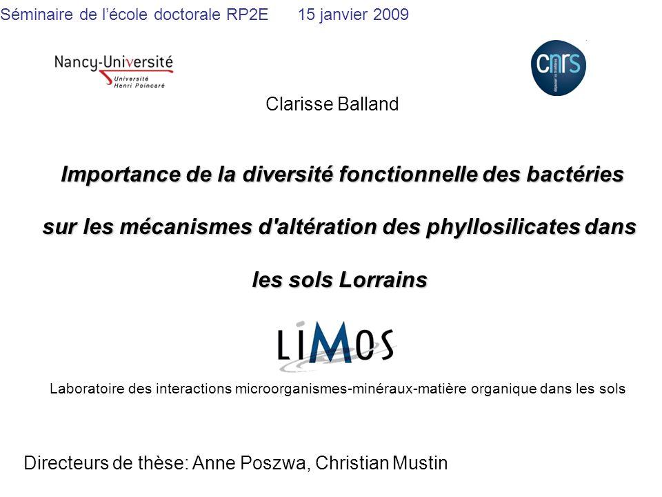Importance de la diversité fonctionnelle des bactéries sur les mécanismes d'altération des phyllosilicates dans les sols Lorrains Importance de la div