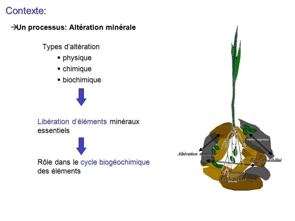 Contexte: Altération minérale Biodisponibilité ContraintesEcologiques Libération déléments minéraux essentiels Rôle dans le cycle biogéochimique des é