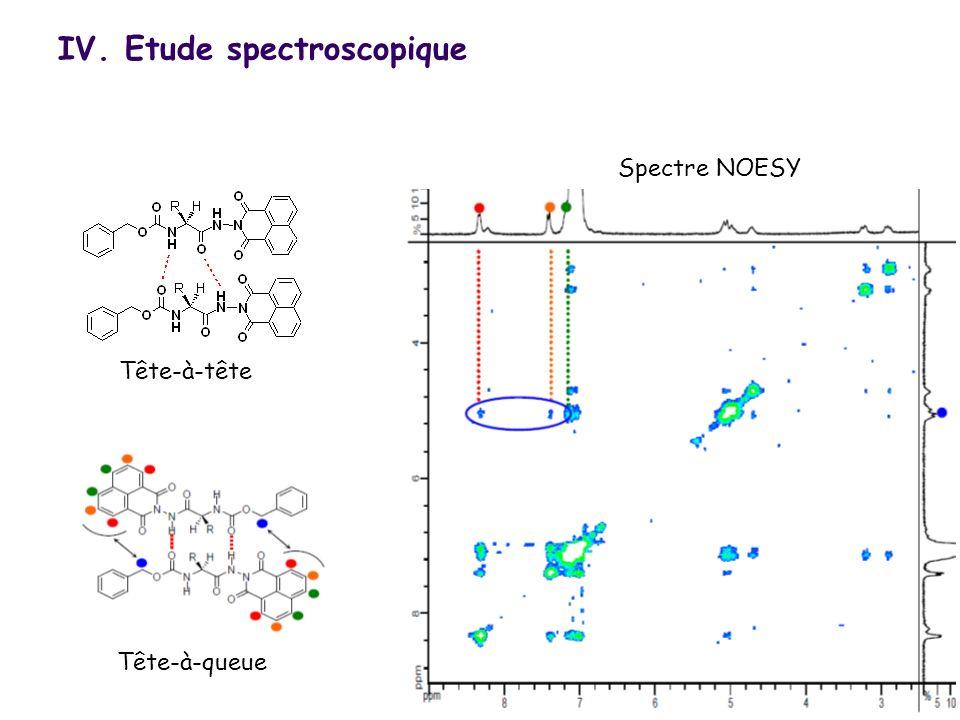 18 Spectre NOESY Tête-à-queue Tête-à-tête IV. Etude spectroscopique