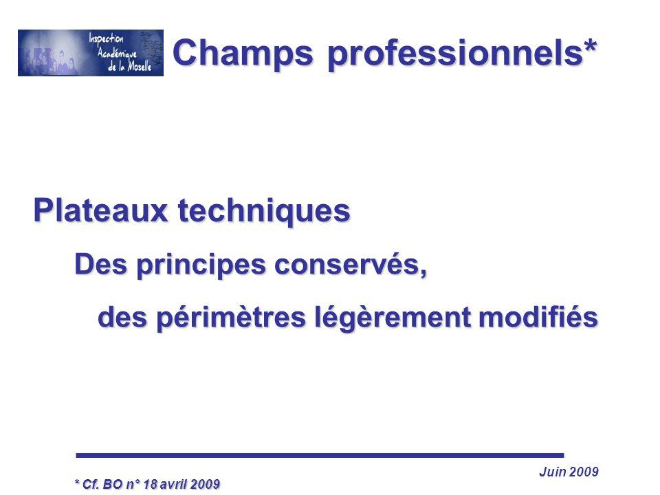 Juin 2009 Champs professionnels* Des principes conservés, des périmètres légèrement modifiés * Cf. BO n° 18 avril 2009 Plateaux techniques