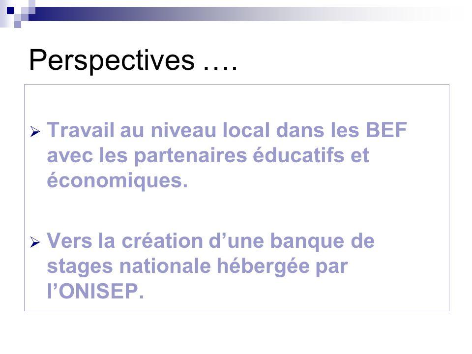 Perspectives …. Travail au niveau local dans les BEF avec les partenaires éducatifs et économiques.