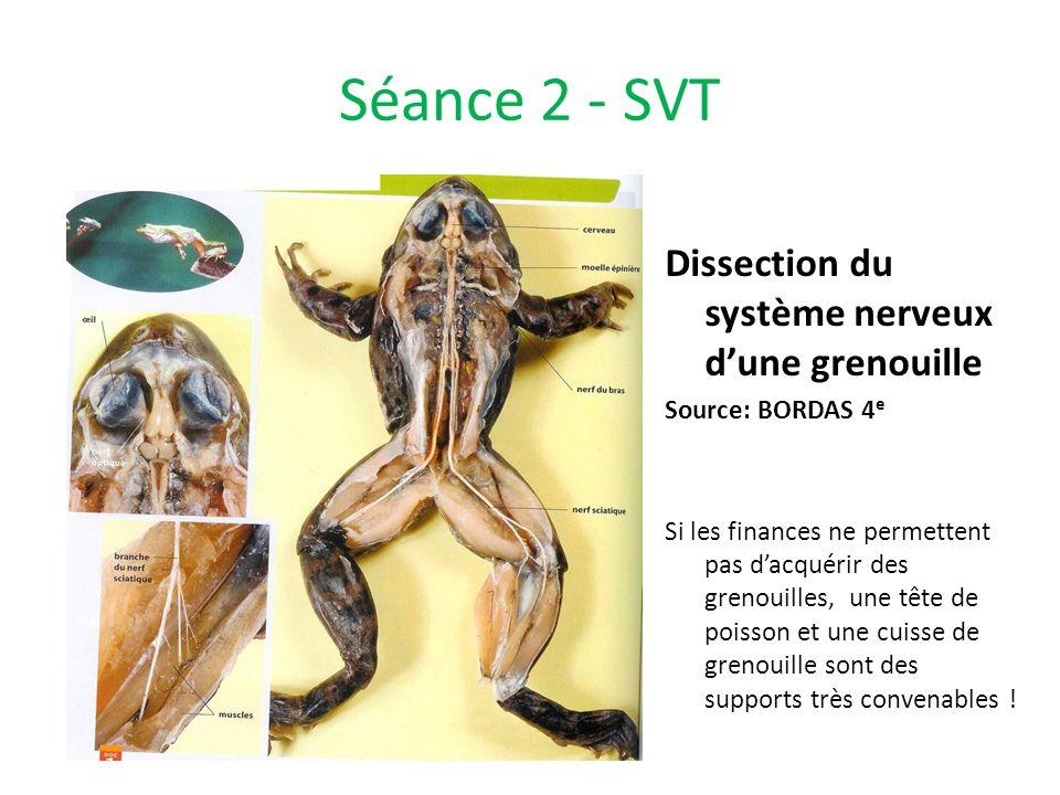 Séance 2 - SVT Dissection du système nerveux dune grenouille Source: BORDAS 4 e Si les finances ne permettent pas dacquérir des grenouilles, une tête
