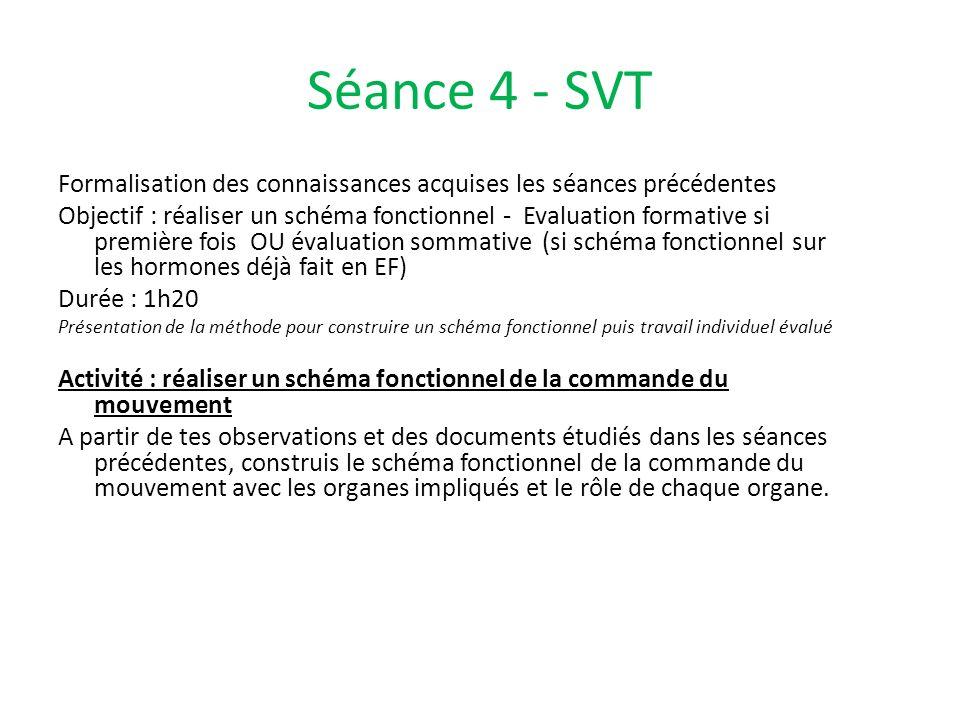 Séance 4 - SVT Formalisation des connaissances acquises les séances précédentes Objectif : réaliser un schéma fonctionnel - Evaluation formative si pr