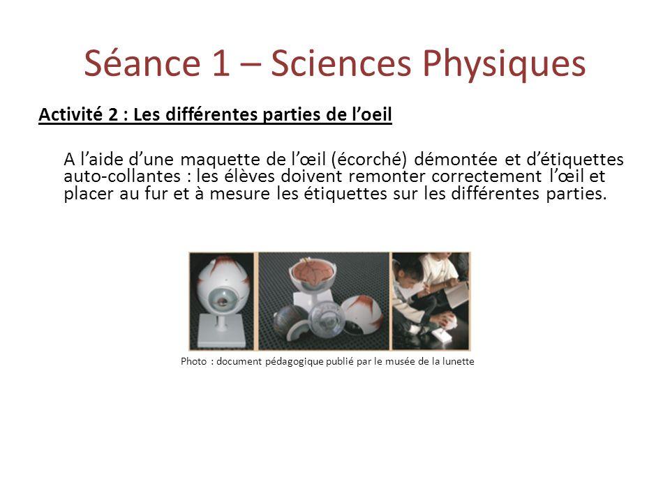 Séance 1 – Sciences Physiques Activité 2 : Les différentes parties de loeil A laide dune maquette de lœil (écorché) démontée et détiquettes auto-colla