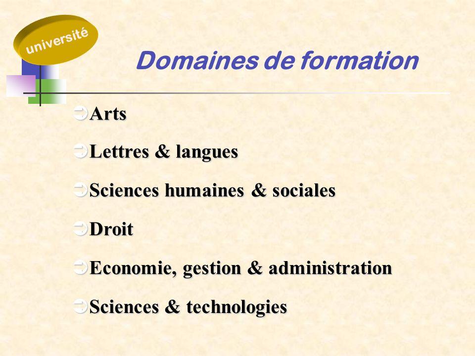 Domaines de formation Arts Arts Sciences humaines & sociales Sciences humaines & sociales Droit Droit Economie, gestion & administration Economie, ges
