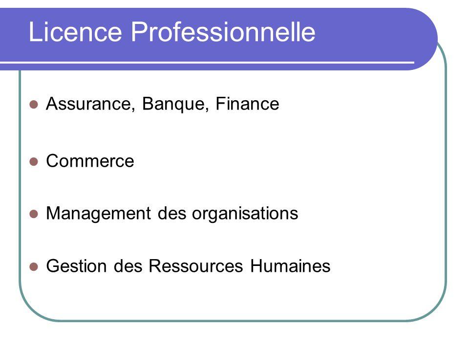 Licence Professionnelle Assurance, Banque, Finance Commerce Management des organisations Gestion des Ressources Humaines