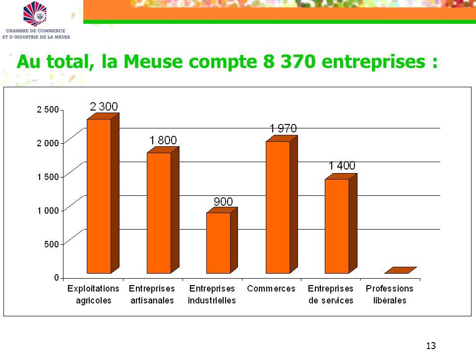 13 Au total, la Meuse compte 8 370 entreprises :