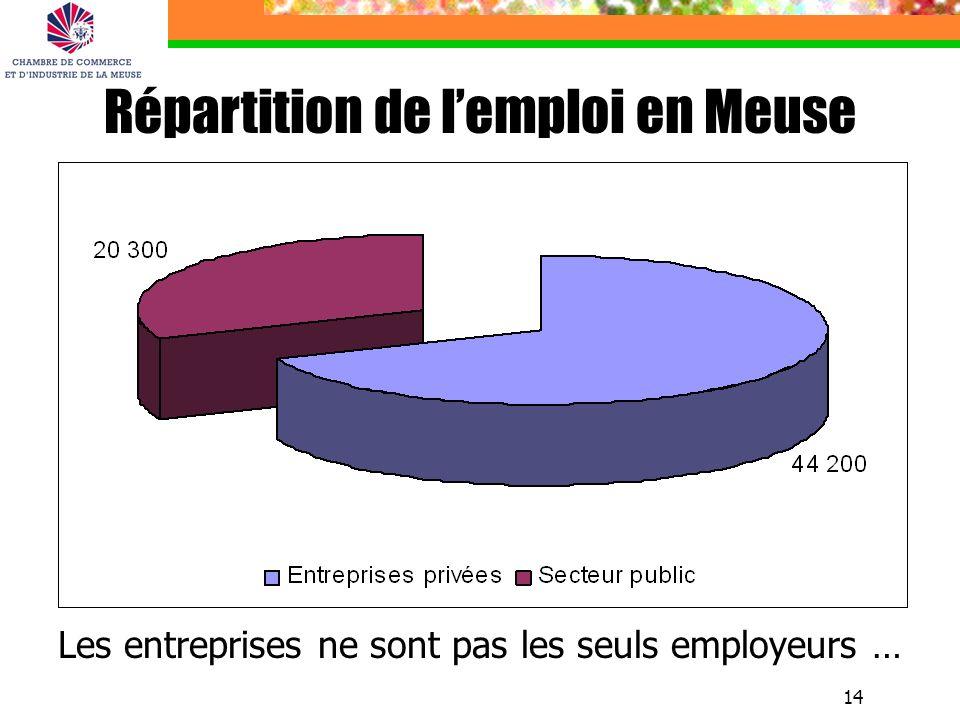 14 Répartition de lemploi en Meuse Les entreprises ne sont pas les seuls employeurs …