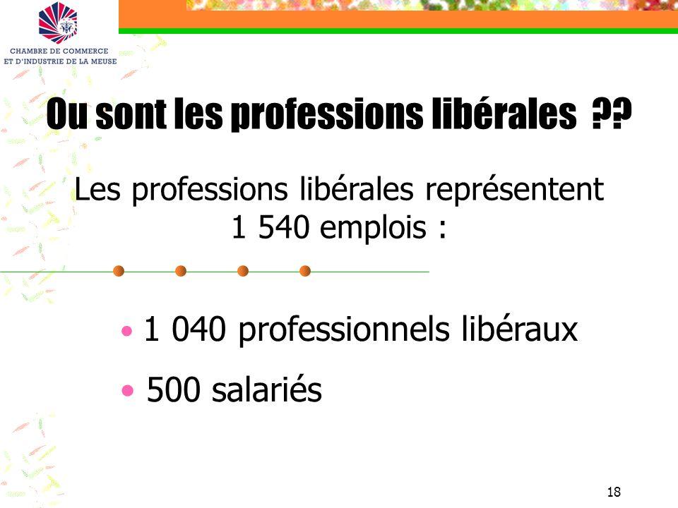18 1 040 professionnels libéraux 500 salariés Ou sont les professions libérales ?? Les professions libérales représentent 1 540 emplois :