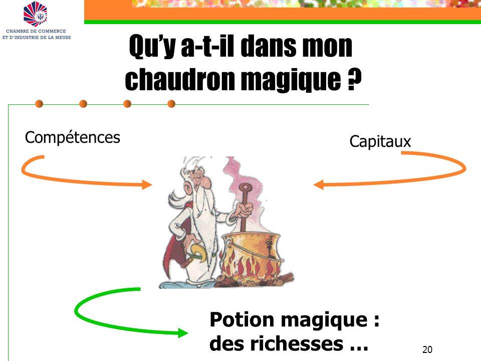20 Compétences Capitaux Potion magique : des richesses … Quy a-t-il dans mon chaudron magique ?
