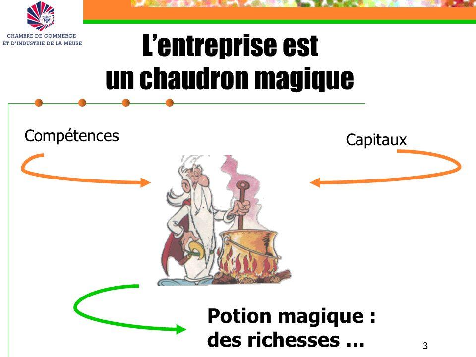 3 Compétences Capitaux Potion magique : des richesses … Lentreprise est un chaudron magique