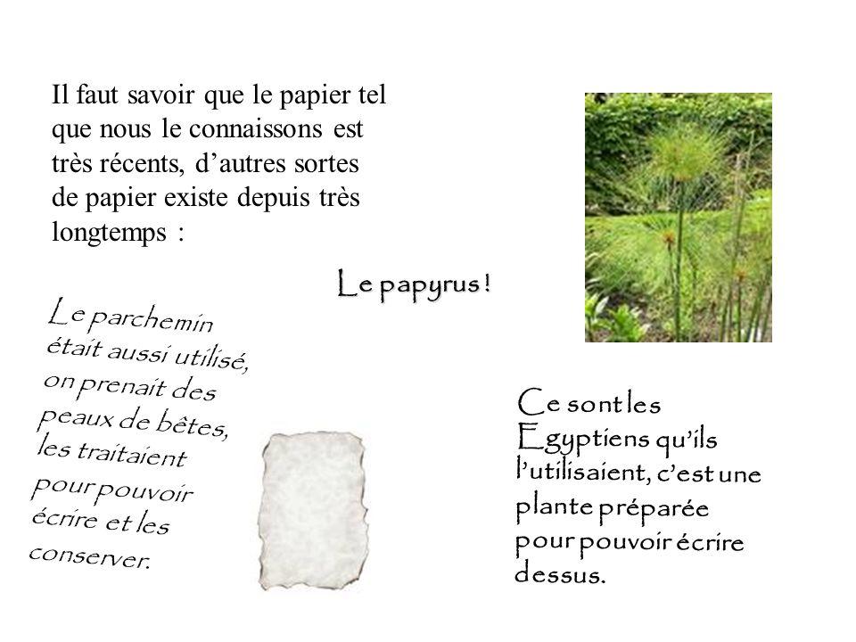 Il faut savoir que le papier tel que nous le connaissons est très récents, dautres sortes de papier existe depuis très longtemps : Le papyrus ! Ce son