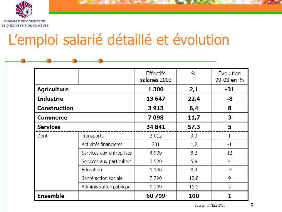 8 Effectifs salariés 2003 %Evolution 99-03 en % Agriculture1 3002,1-31 Industrie13 64722,4-8 Construction3 9136,48 Commerce7 09811,73 Services34 84157