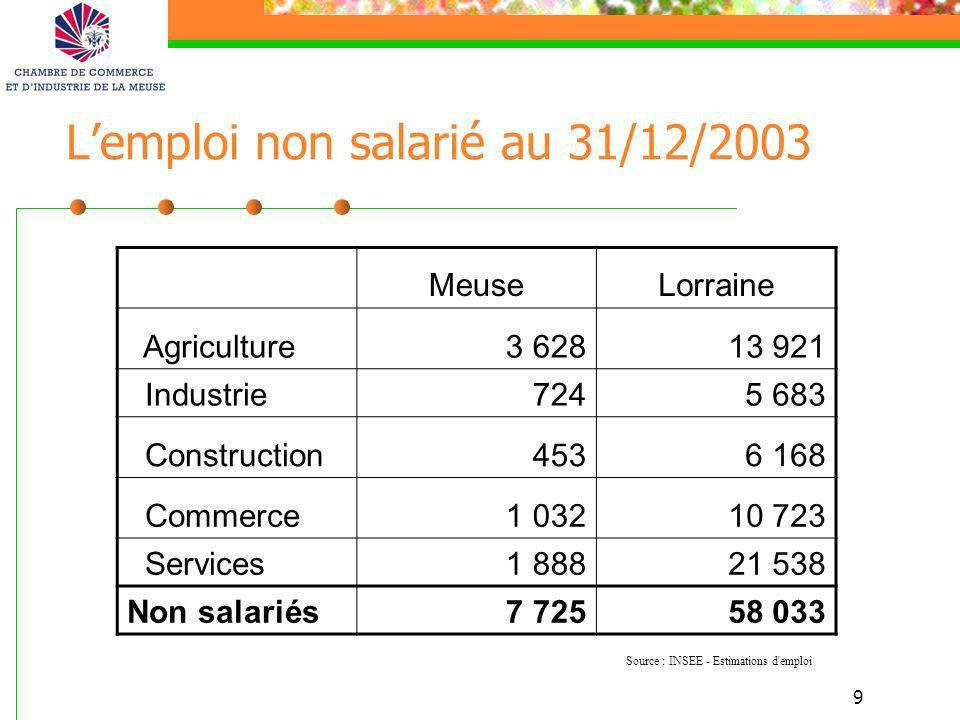 9 Lemploi non salarié au 31/12/2003 MeuseLorraine Agriculture3 62813 921 Industrie7245 683 Construction4536 168 Commerce1 03210 723 Services1 88821 53