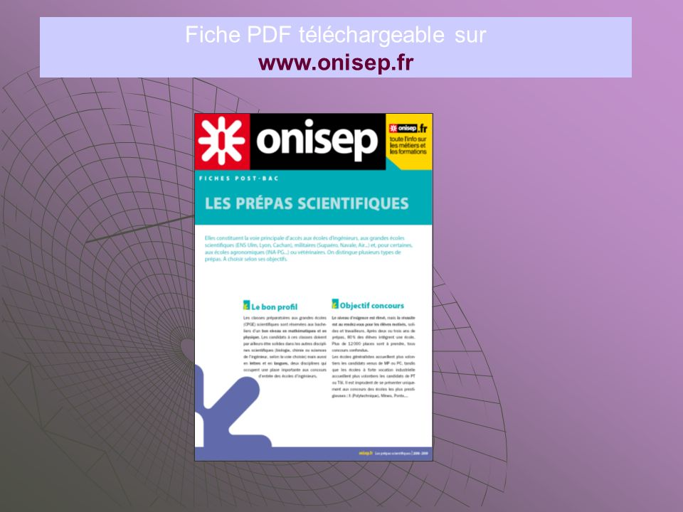 Fiche PDF téléchargeable sur www.onisep.fr