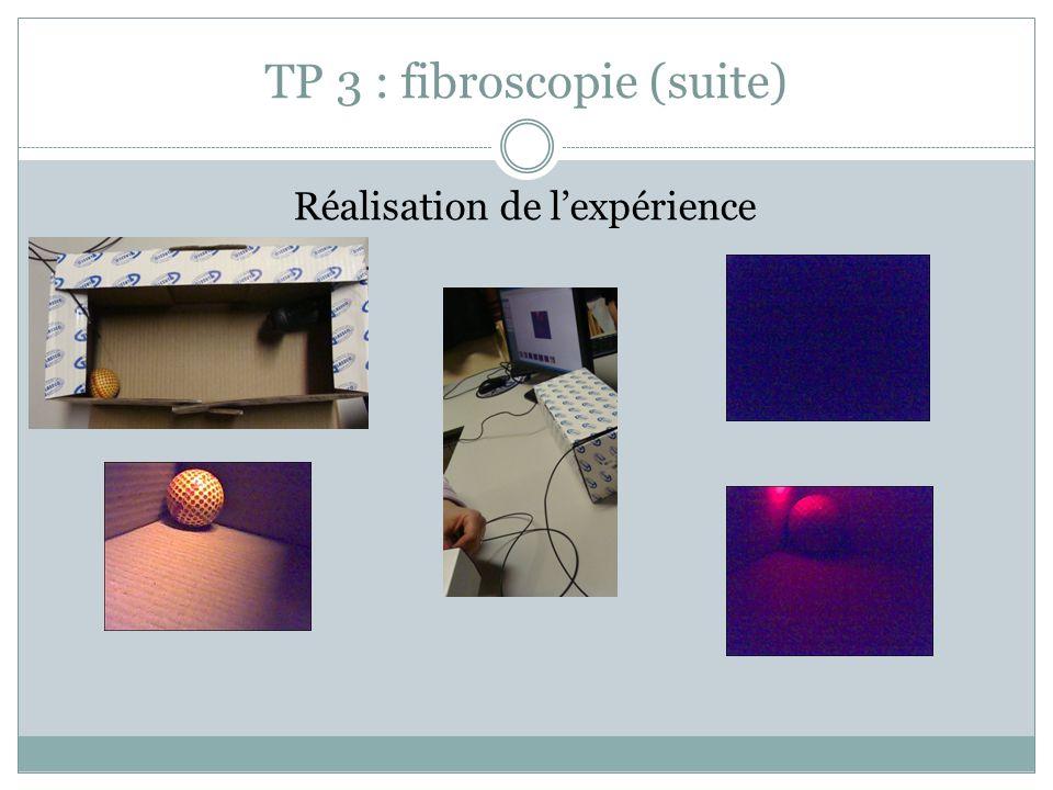 TP 3 : fibroscopie (suite) Réalisation de lexpérience