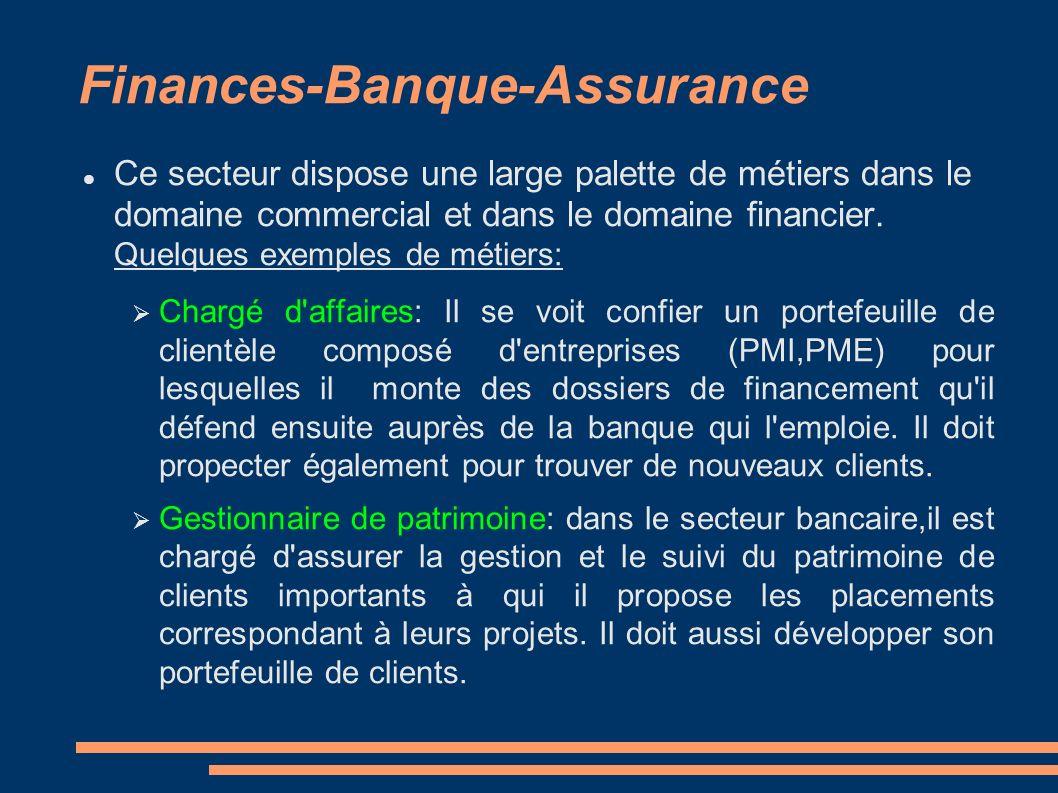 Finances-Banque-Assurance Ce secteur dispose une large palette de métiers dans le domaine commercial et dans le domaine financier. Quelques exemples d