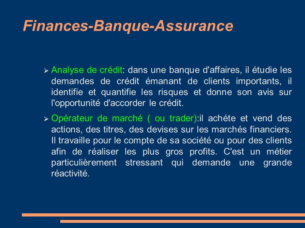 Finances-Banque-Assurance Analyse de crédit: dans une banque d affaires, il étudie les demandes de crédit émanant de clients importants, il identifie et quantifie les risques et donne son avis sur l opportunité d accorder le crédit.