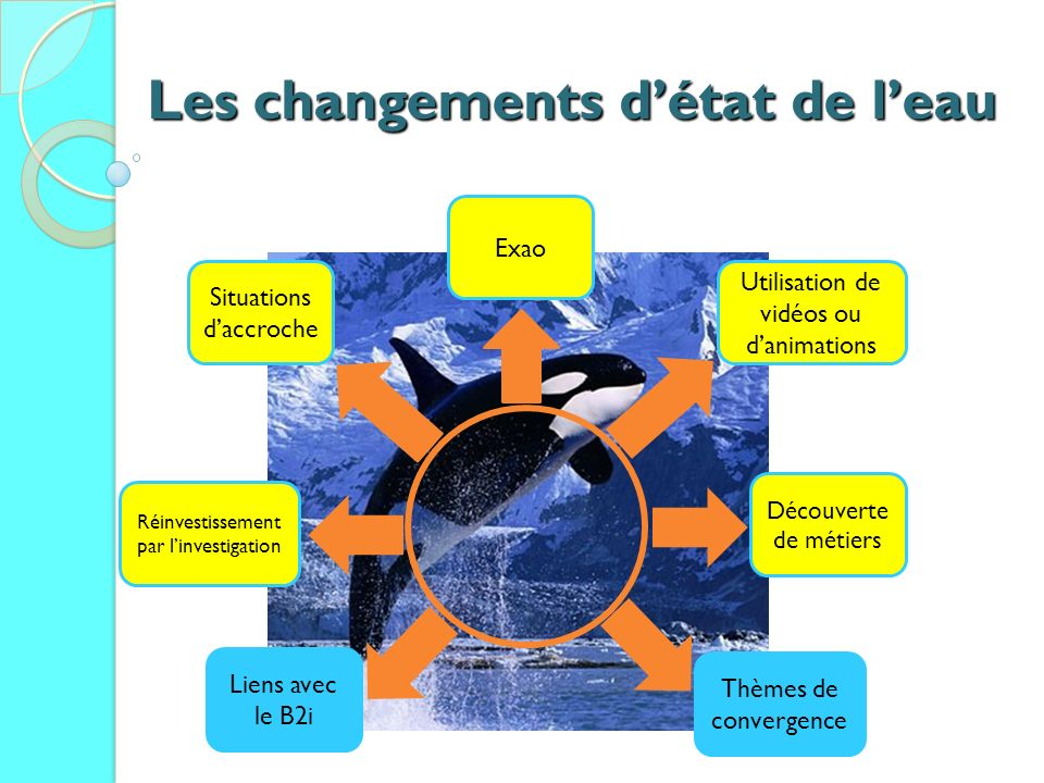 Les changements détat de leau Situations daccroche Exao Utilisation de vidéos ou danimations Découverte de métiers Réinvestissement par linvestigation