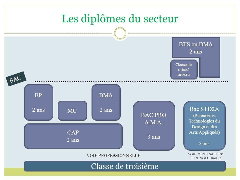 Les diplômes du secteur Classe de troisième BAC PRO A.M.A. 3 ans BMA 2 ans CAP 2 ans BP 2 ans MC Bac STD2A (Sciences et Technologies du Design et des