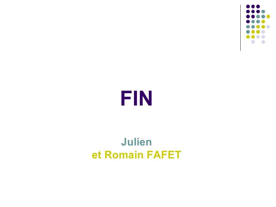 FIN Julien et Romain FAFET