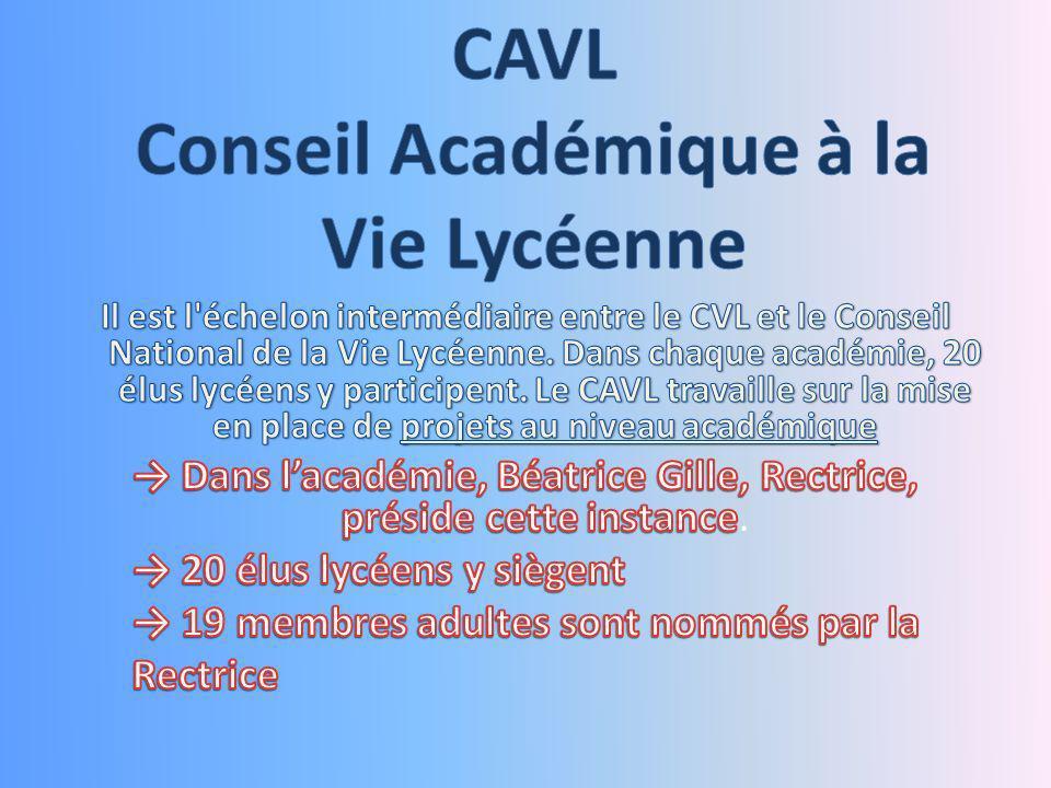 Concrètement le CAVL, cest la mise en place dans les lycées de lacadémie, dès la rentrée 2013, du projet Cascade initié par les élus Lycéens Chaîne dAction Solidaire pour la Continuité des apprentissages et des enseignements